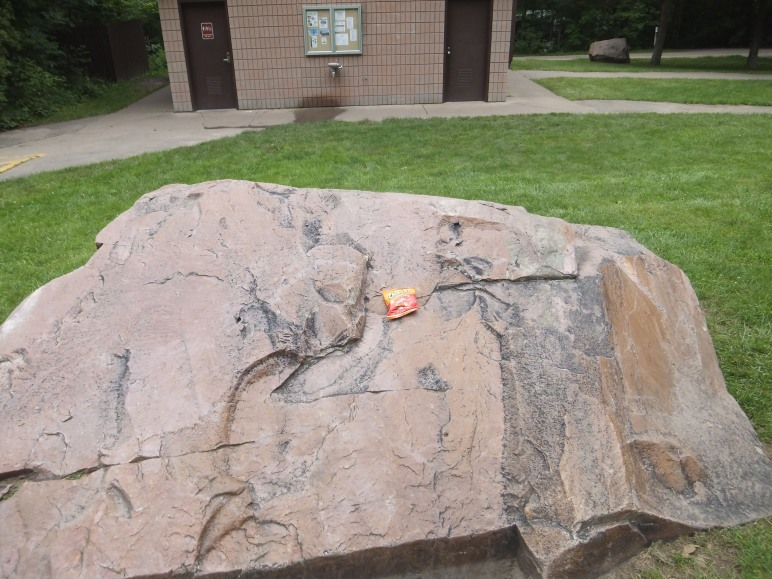 So, so many campers pass this rock on the way to the shower house. And in their hurry, they invariably miss their Cheetos. It's tragic, really.